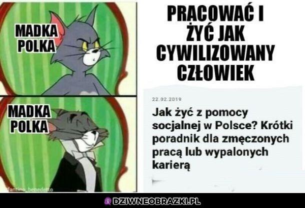 Jak żyć w Polsce?