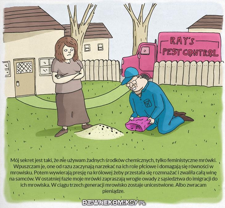 Postępowe metody radzenia sobie z insektami