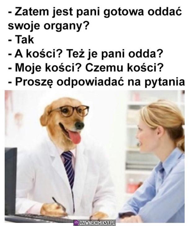 Oddawanie organów