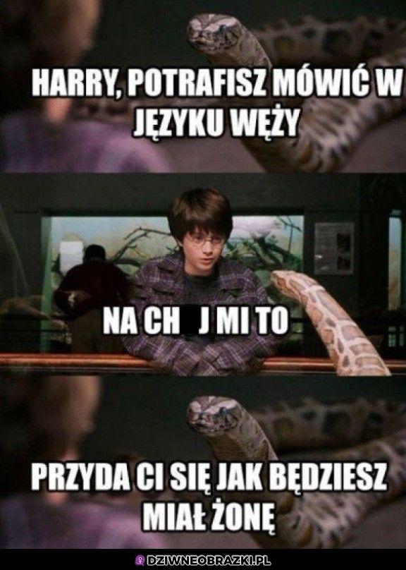 Mowa w języku węży