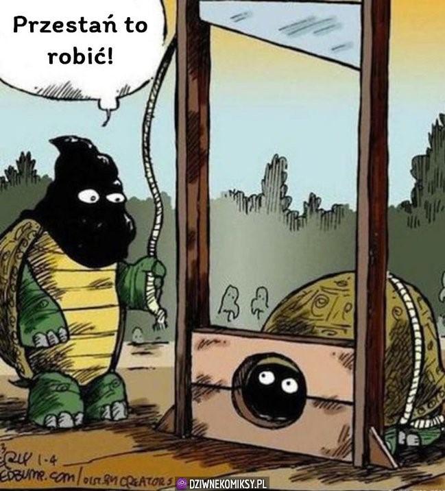 Żółwik śmieszek