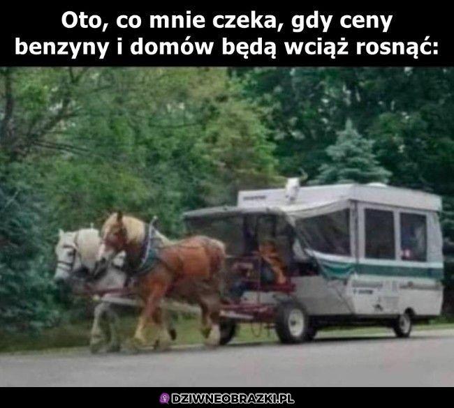 Konie też drogie