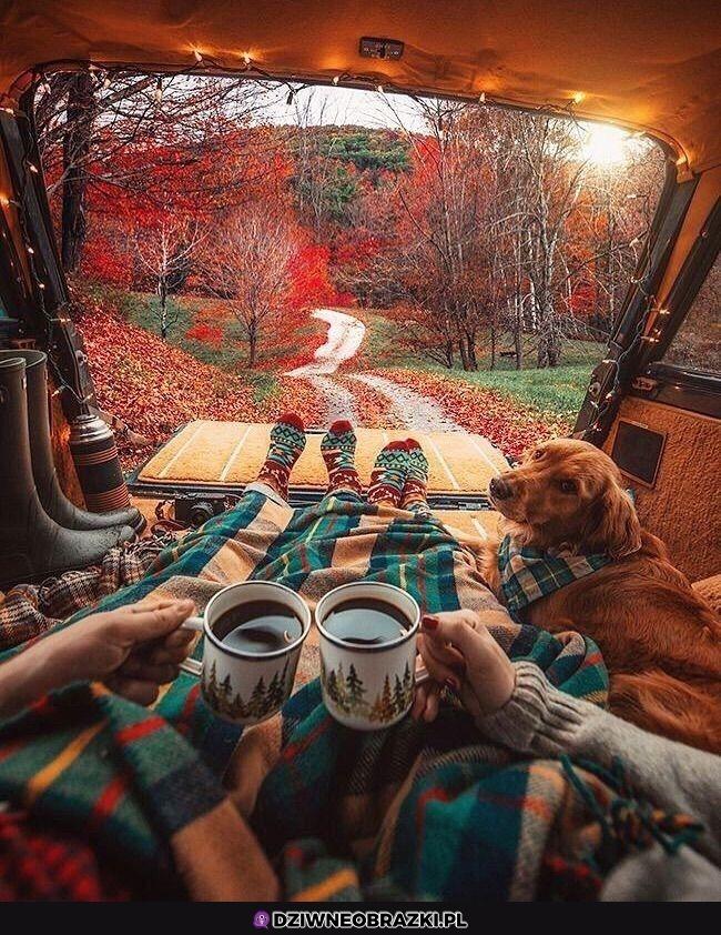 Takiej jesieni chcemy