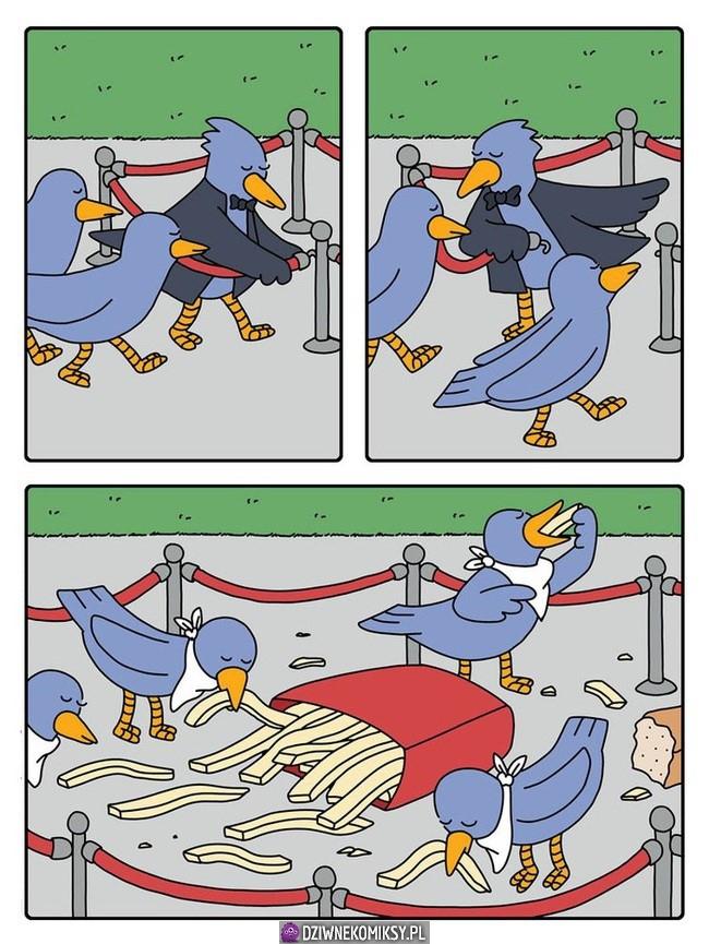 Ptasia uczta